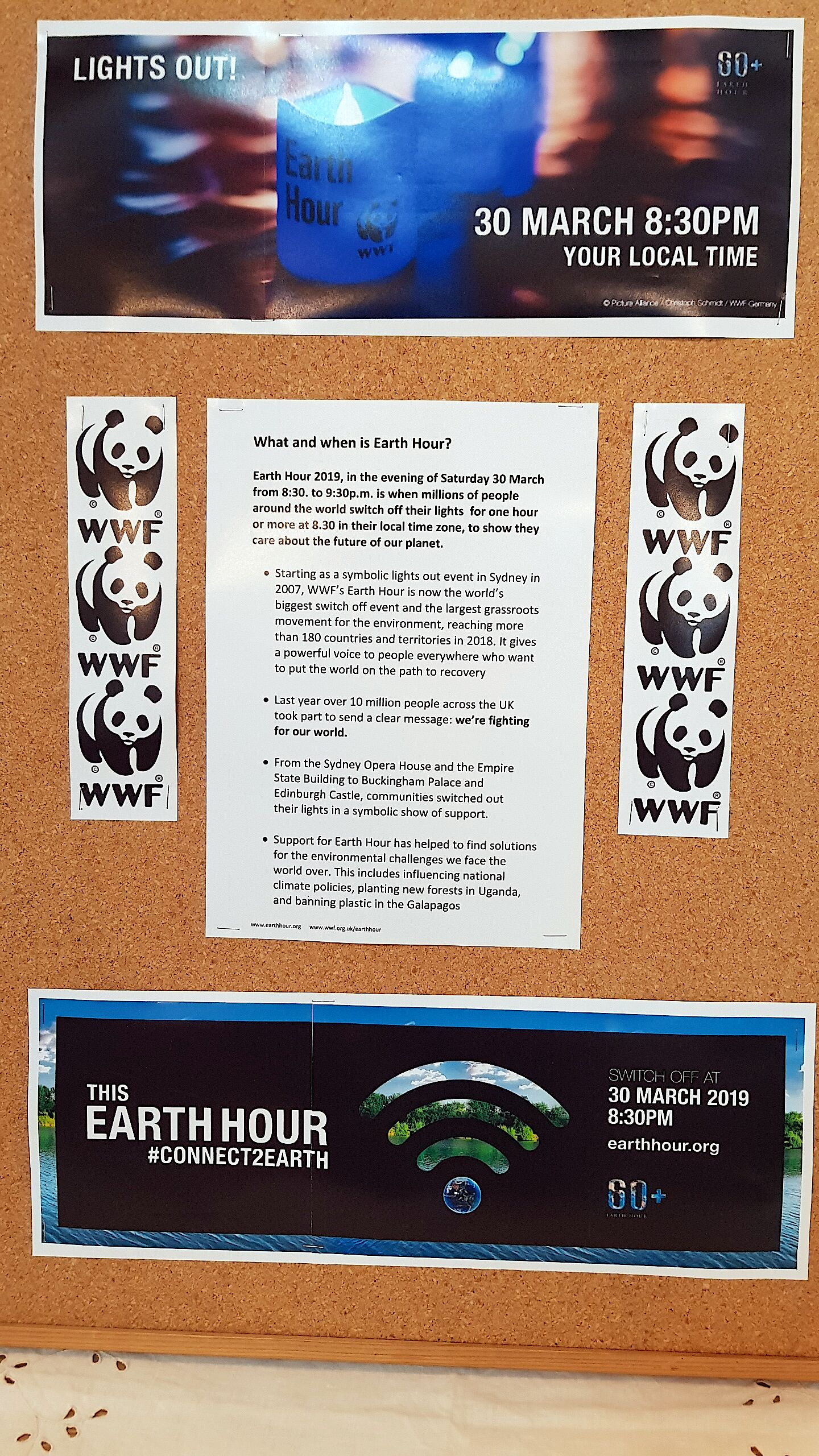 Earth Watch board